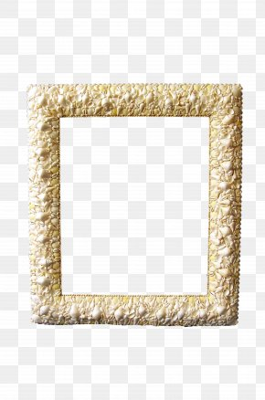 Shell Frame - Picture Frame Photography Digital Photo Frame PNG