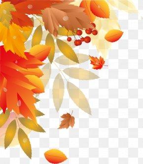 Autumn Leaves - Autumn Leaf Clip Art PNG