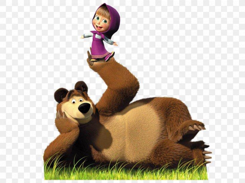 Bear Desktop Wallpaper Animation Display Resolution Png