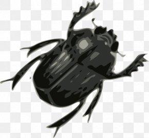 Beatles Cliparts - Beetle Ladybird Clip Art PNG