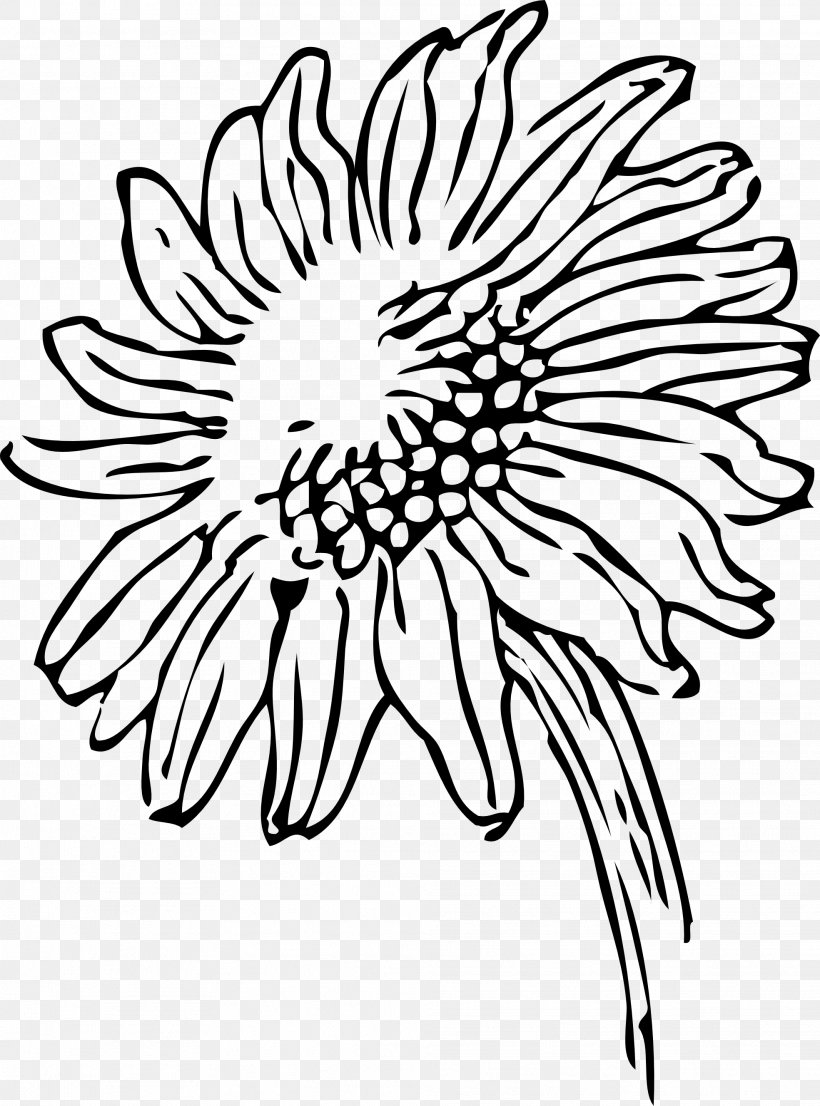 Black And White Drawing Clip Art, PNG, 1969x2658px, Black And White, Art, Artwork, Black, Chrysanths Download Free