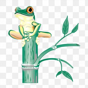 Frog On Branch - Tree Frog Clip Art PNG