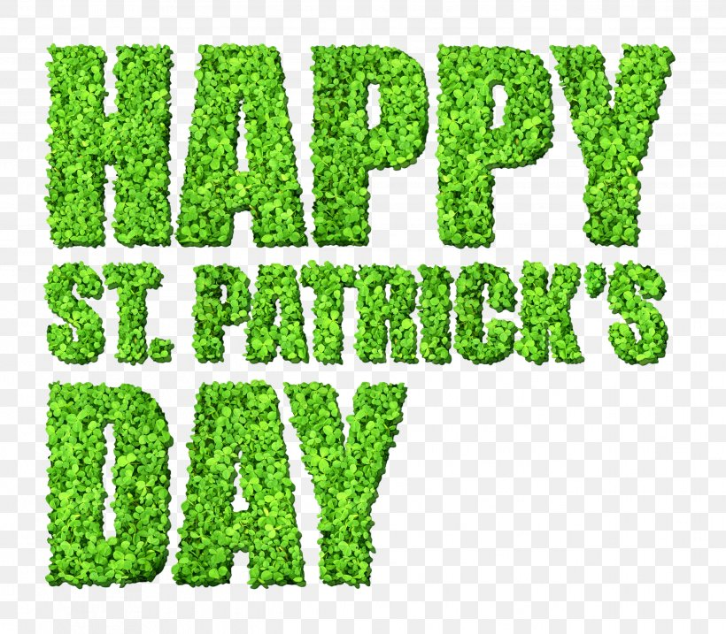 Saint Patrick's Day Public Holiday March 17 Clip Art, PNG, 2633x2304px, Saint Patrick S Day, Brand, Grass, Grass Family, Green Download Free