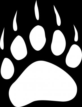 Bear Paw Cliparts - White Bear Lake Area High School School District 35 Langley Student Wix-Brown Elementary School PNG
