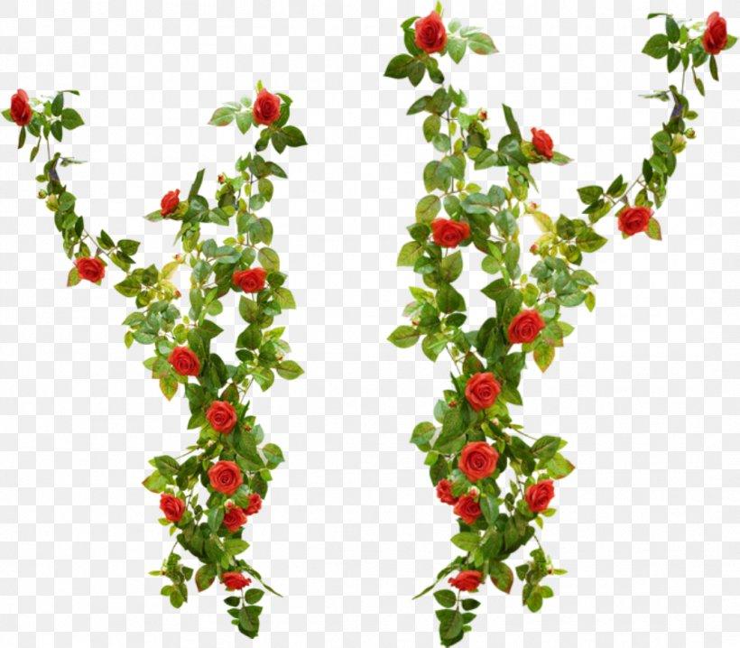 Rattan, fruit, flowers lace pattern Clipart Images