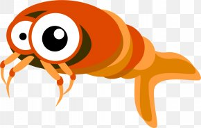 Fish - Marine Biology Cartoon Vector Graphics Image PNG
