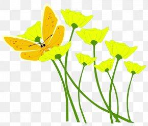Yellow Flower - Flower Yellow Clip Art PNG