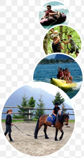International Summer Camps In Switzerland Camping Day Camp ChildSummer Camping - Les Elfes Verbier PNG
