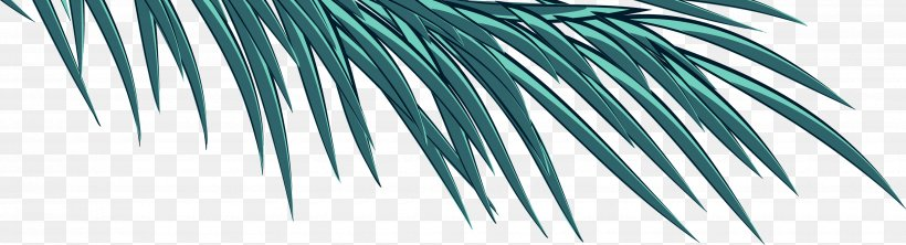 Arecaceae Blue Turquoise Green Teal, PNG, 3500x950px, Arecaceae, Aqua, Arecales, Azure, Blue Download Free