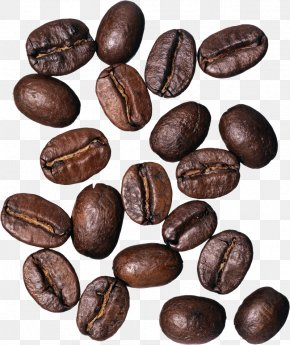 Coffee Beans - Coffee Bean Cafe Burr Mill Grinding Machine PNG
