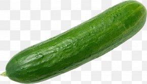 Cucumber - Cucumber Israeli Salad Vegetable Fruit Food PNG
