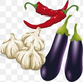 Eggplant Garlic Pepper Vector Material - T-shirt Bento Eggplant Jam Galbi Garlic PNG