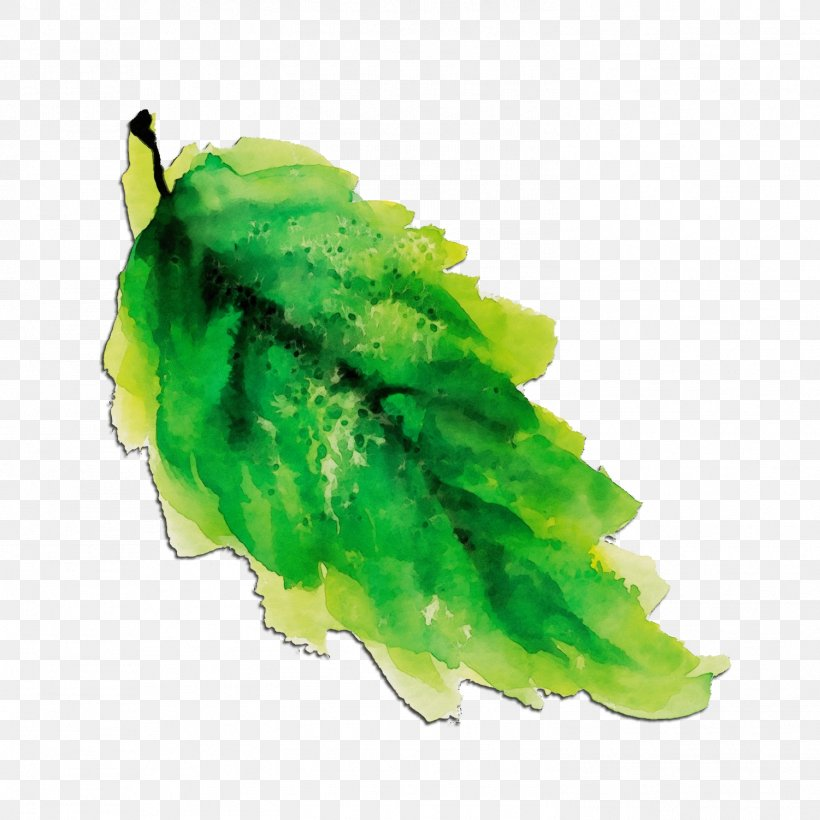 Green Leaf Watercolor, PNG, 1501x1501px, Watercolor, Feather, Green, Leaf, Paint Download Free