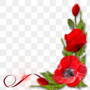 Red Floral Decoration Pattern - Poppy Red Flower PNG