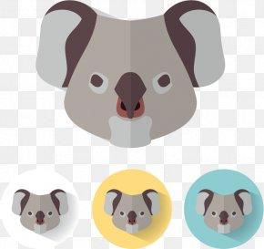 Koala Avatar - Koala Euclidean Vector Illustration PNG