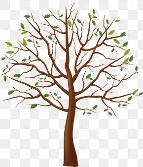 Tree - Clip Art Tree Branch Trunk PNG