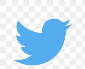 Bird Wing - Google Logo Background PNG