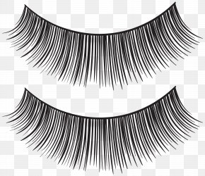 Eyelash Strips Transparent Clip Art Image - Eyelash Extensions Mascara Clip Art PNG
