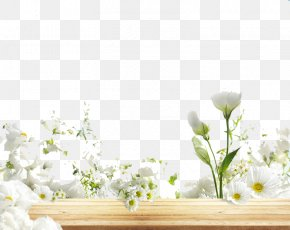 Flower Spa Images Flower Spa Transparent Png Free Download