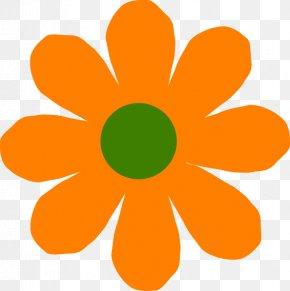 Orange Flowers - Flower Spring Clip Art PNG