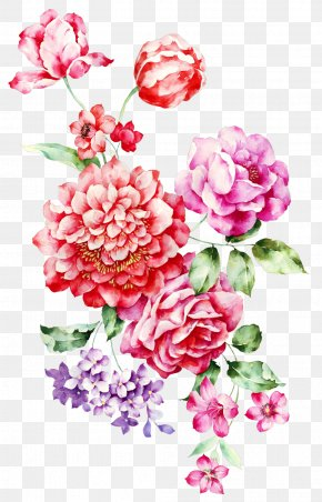 Hand-painted Flowers - Rosa Chinensis Garden Roses Centifolia Roses Flower PNG
