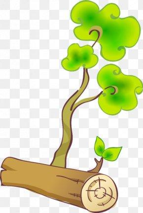 Tree - Tree Stump Branch Trunk Clip Art PNG