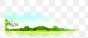 Fresh Spring Grass - Lawn Land Lot Grassland Sky Wallpaper PNG