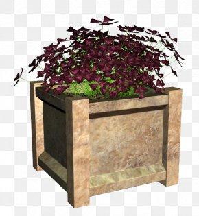 Plants - Flowerpot Houseplant Clip Art Garden Plants PNG