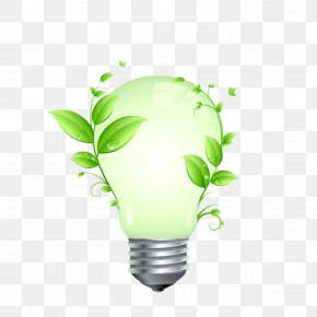 Light Bulb - Incandescent Light Bulb LED Lamp Energy Conservation Efficient Energy Use PNG