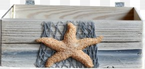 Starfish Wooden - Starfish Wood Fishing Net PNG