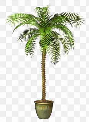 Tree - Flowerpot Tree Plant PNG