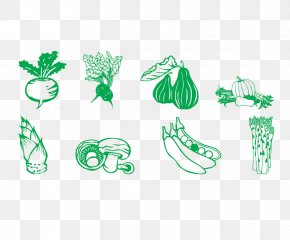 Vegetable Icon - Vegetable Illustration PNG