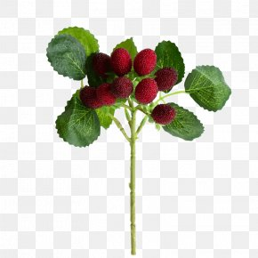 High Imitation Plant Simulation Simulation Fruit Tree Branches - Strawberry Simulation Red Raspberry Plant Fruit Tree PNG