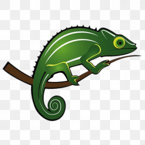 Green Chameleon - Adaptation Wild Animals Of The North Clip Art PNG