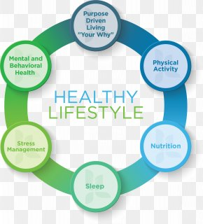 Health - Health, Fitness And Wellness Lifestyle Health System Stress Management PNG