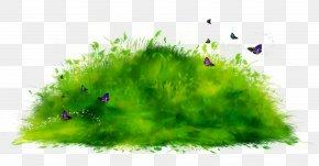 Clip Art Ecosystem Desktop Wallpaper Image PNG