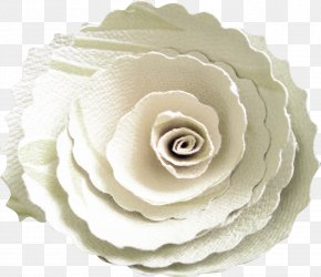 Flower-shaped Biscuits - Garden Roses Paper Flower Clip Art PNG