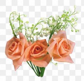 Flower - Flower Bouquet Cut Flowers Garden Roses Floral Design PNG