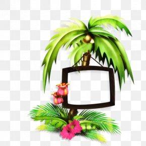 Palm Trees Leaf Clip Art PNG