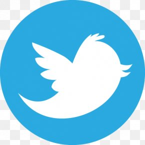 Twitter File - Icon PNG