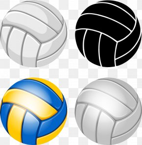 Vector Volleyball - Volleyball Royalty-free Illustration PNG