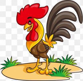 Vector Cartoon Chicken - Chicken Rooster Cartoon Illustration PNG