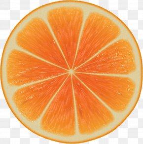 Orange Image Download - Orange Slice Mathematics Symmetry Patterns In Nature PNG