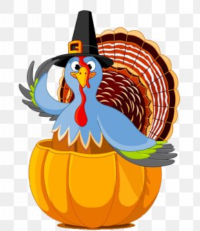 Free Thanksgiving Turkey Buckle Material - Thanksgiving Day Public Holiday Turkey Clip Art PNG