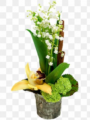 Lily Of The Valley - Lily Of The Valley 1 May Blog PNG
