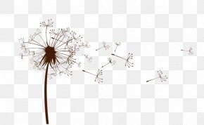 Dandelion Euclidean Vector - Dandelion Design Vector Graphics Flowering Plant PNG