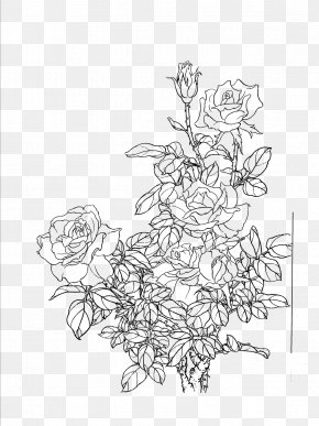 Flowers Line Drawing Artwork - Flower Painting Drawing PNG
