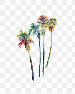 Watercolor Coconut Tree - Wall Decal Arecaceae Watercolor Painting Tree Mural PNG