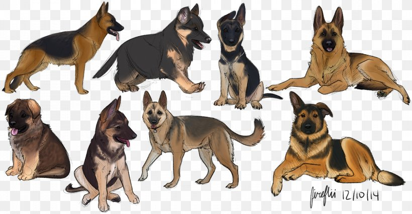 German Shepherd Puppy Ancient Dog Breeds Png 1500x781px
