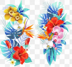 Tropical Flowers Vector - Drawing Vector Graphics Flower Illustration Clip Art PNG